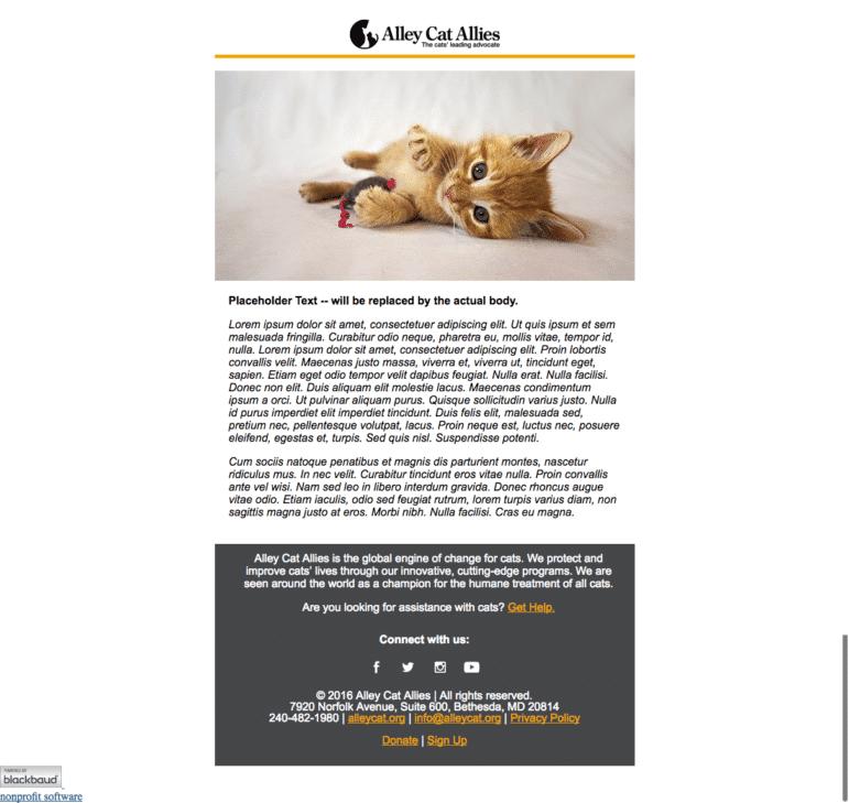 Alley Cat Allies eCard Example