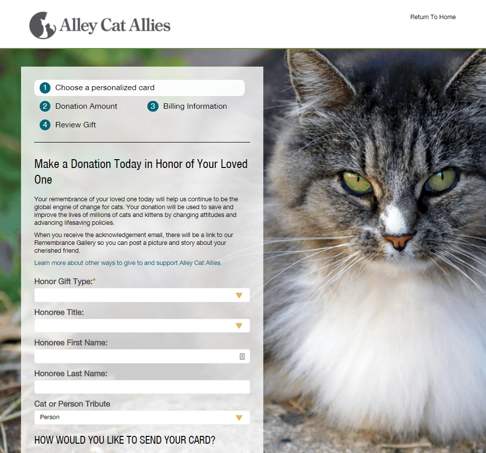 Screenshot of Alley Cat Allies Donation Form and eCard