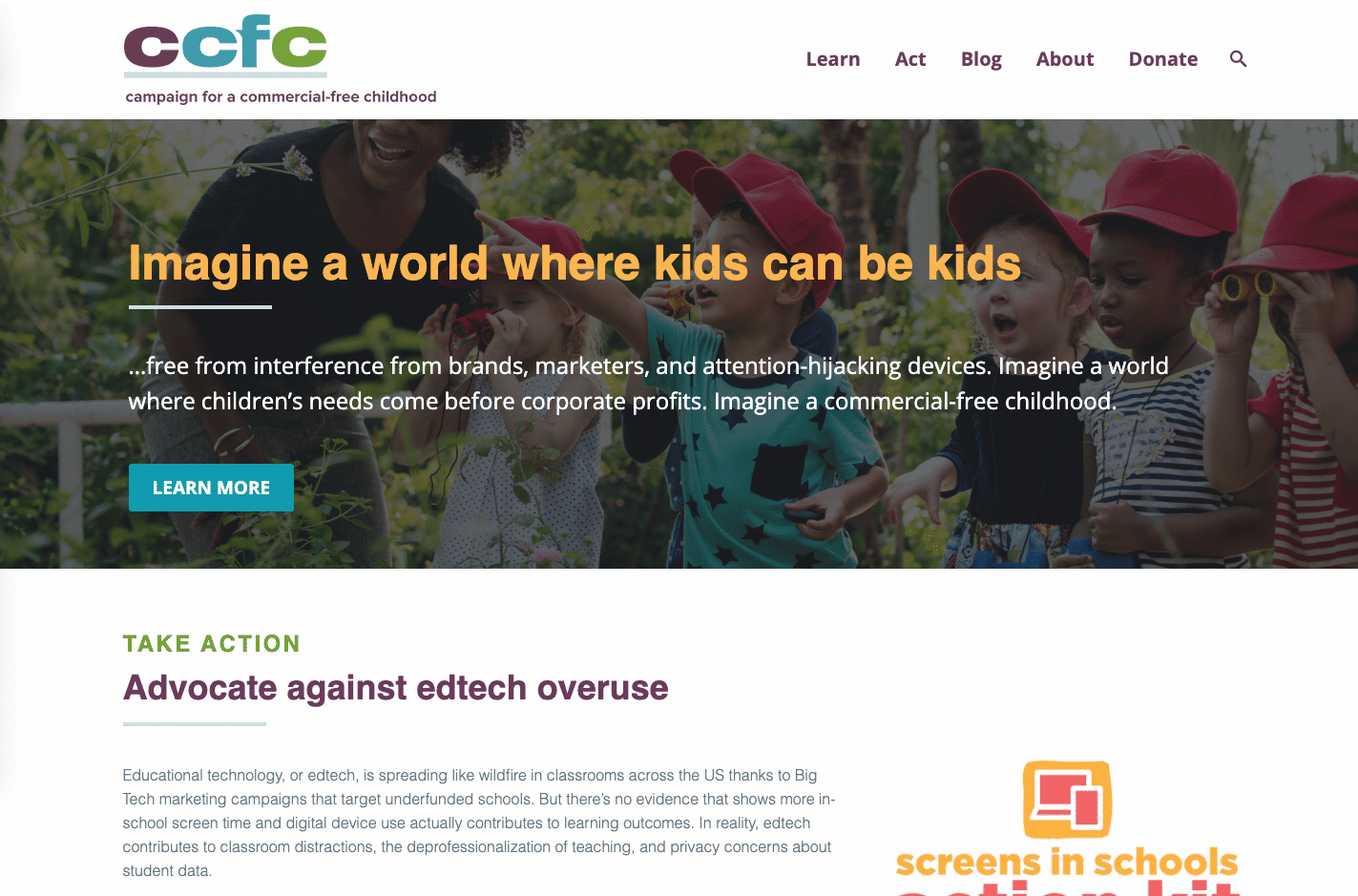 Screenshot of CCFC Supports Excellent Advocacy With a New WordPress Website