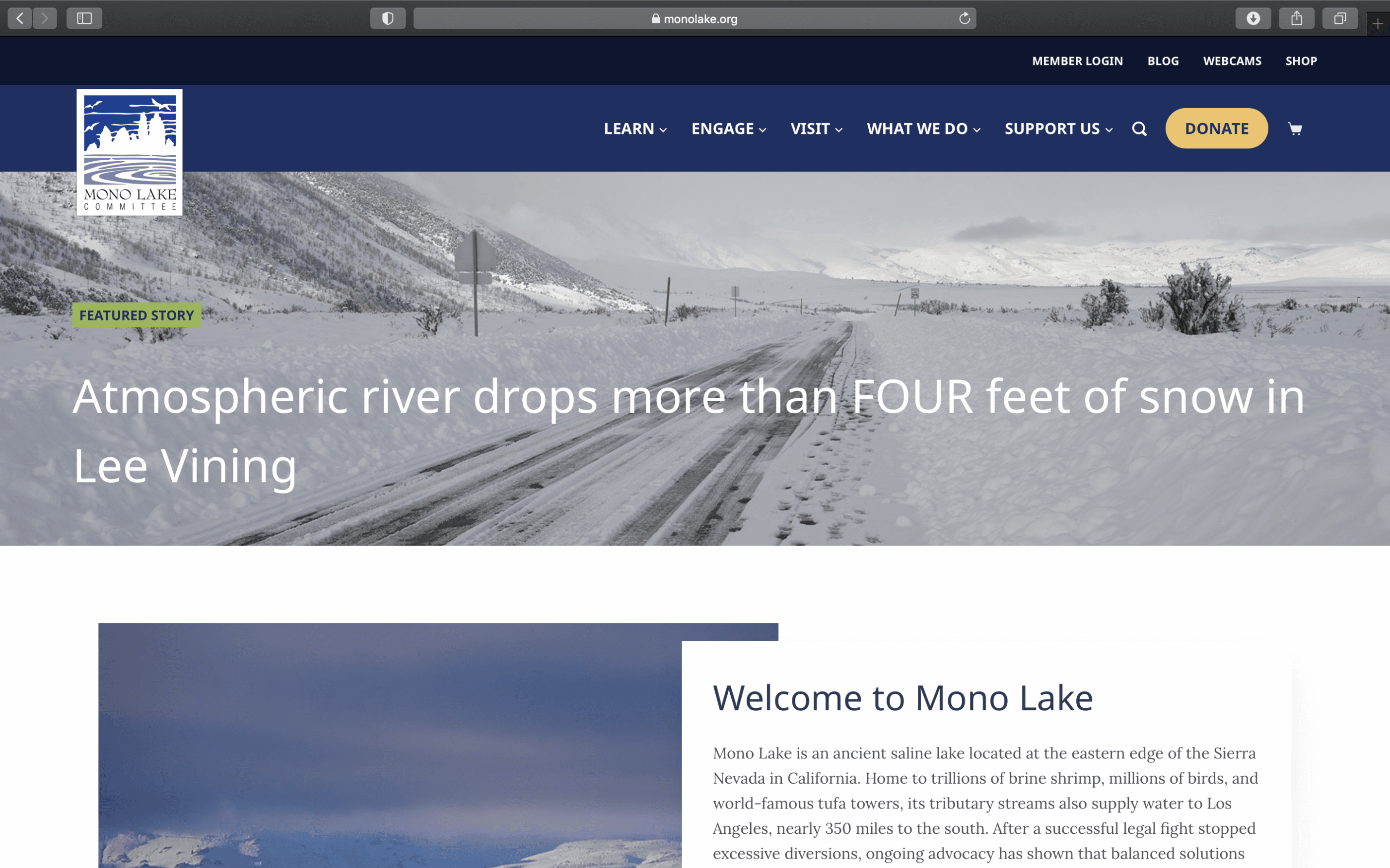 Screenshot of Citizens' Group Advocates for Protection of Mono Basin Ecosystem with New Website