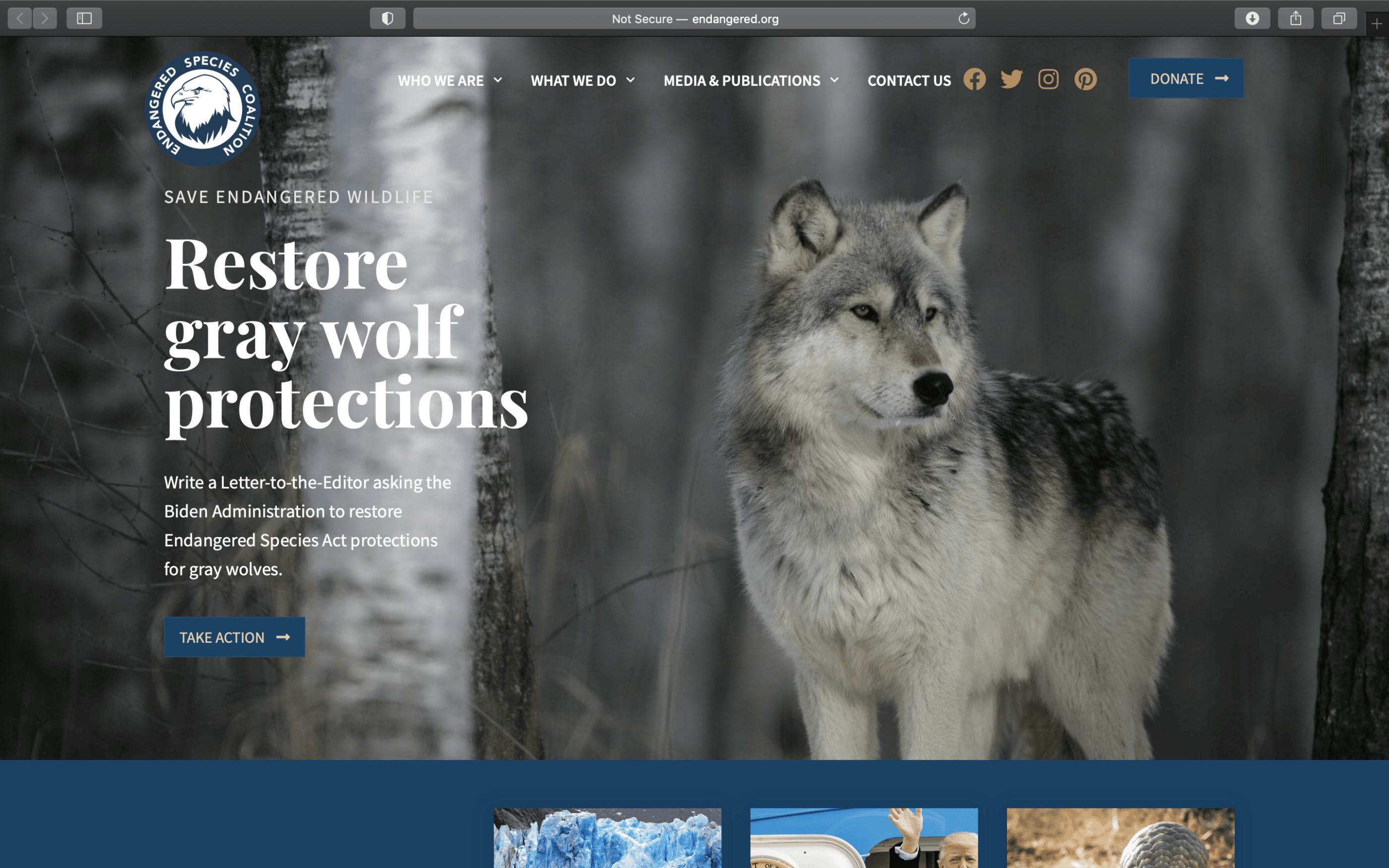 Screenshot of National Network Refreshes Design and Membership with New WordPress Site