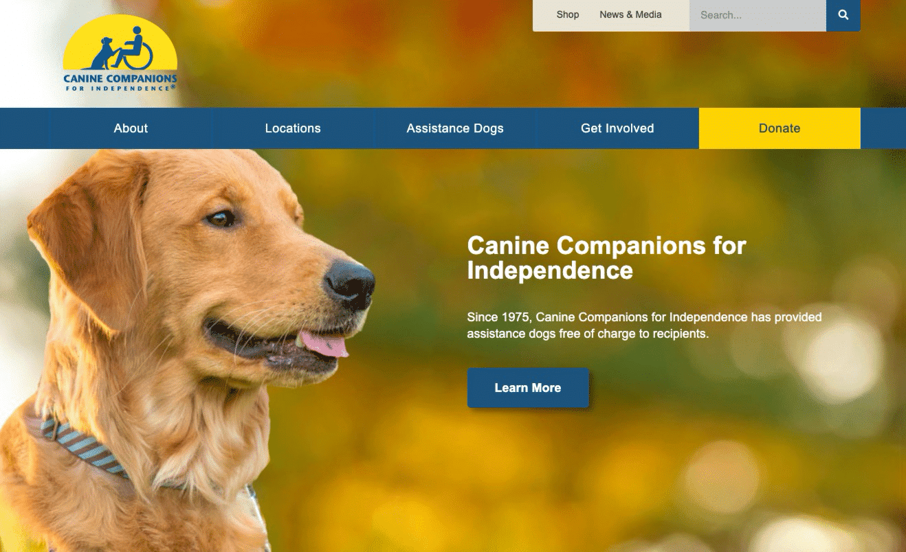 Screenshot of CCI Moves Content and Improves Communications with New WordPress Site
